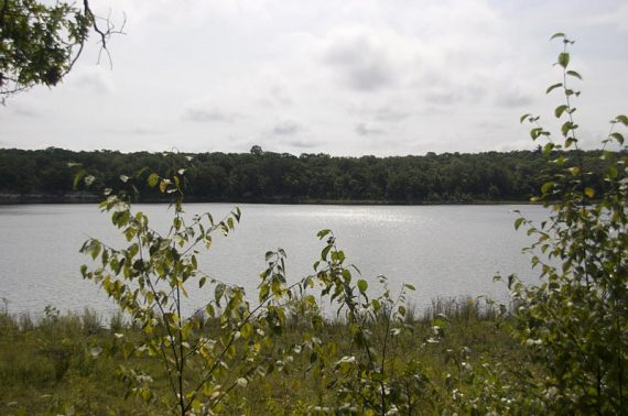 View of Hanks Pond along Hanks West trail.