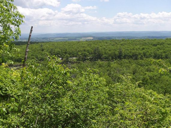 Forest and farm land in the distance seen from a viewpoint along the trail