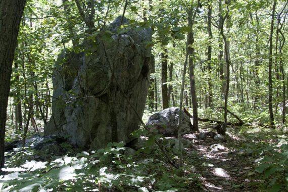 Large glacial eratic boulder