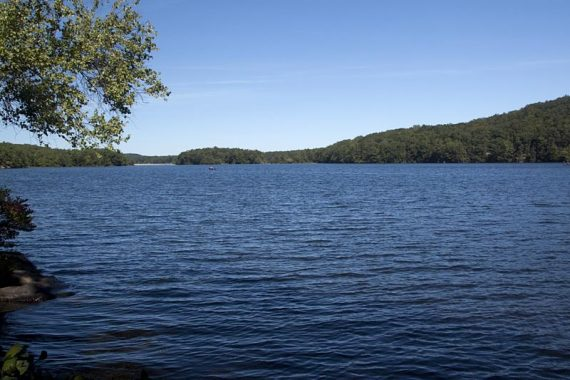 View of Wawayanda Lake from a spur trail off of Pumphouse.