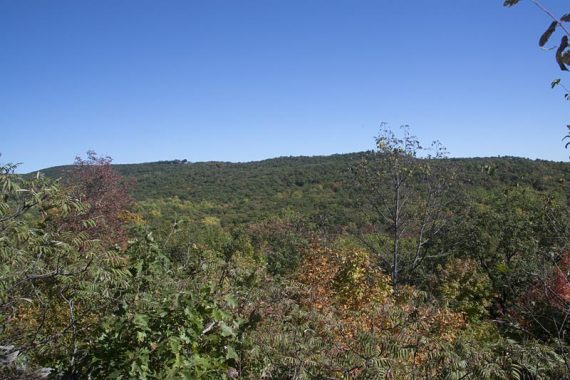 View from the Wanaque Ridge