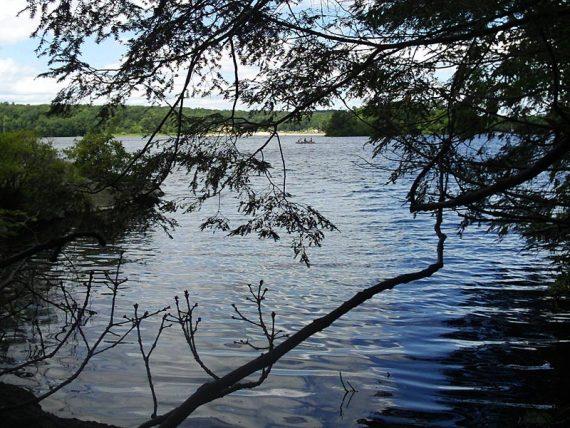 Wawayanda Lake from Lake Loop
