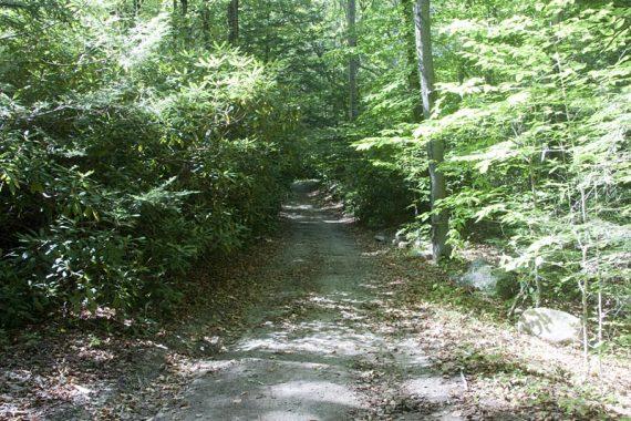 Cherry Ridge Road