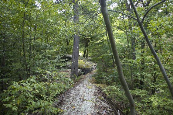 Hanks West trail