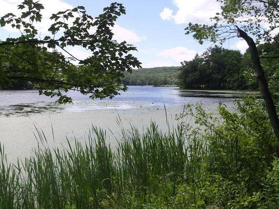 Wawayanda Lake