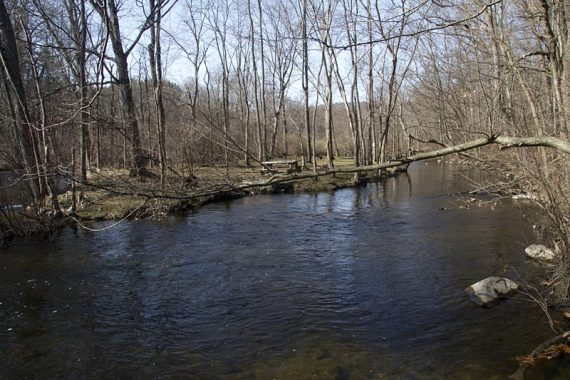 RED goes along the Musconetcong River