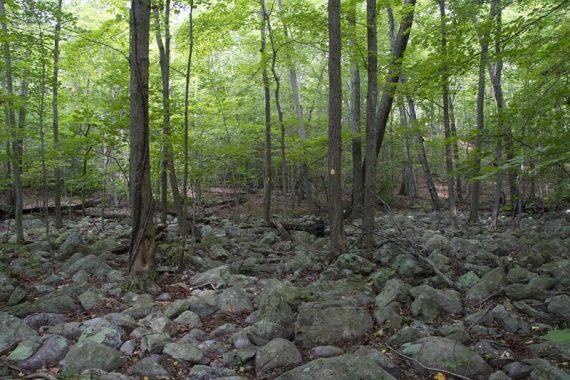 Rocky Wyanokie Crest trail