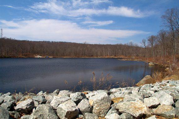 Saffin Pond