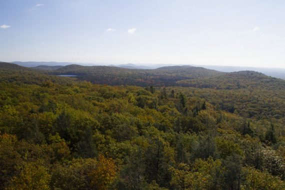 View from the fire tower of trees in the foregrounds and low mountains in the far distance