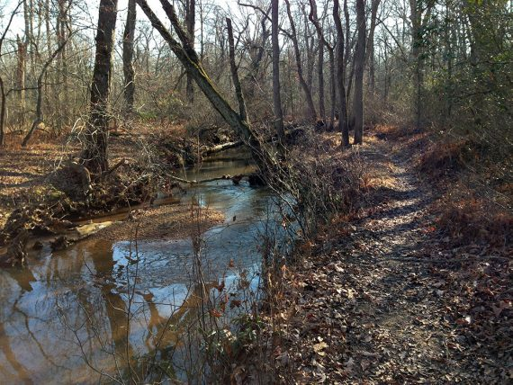 River's Edge trail