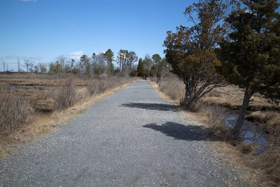 Walking the bike trail to meet up with BLUE