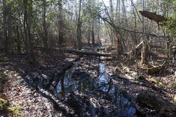 Wet area to cross