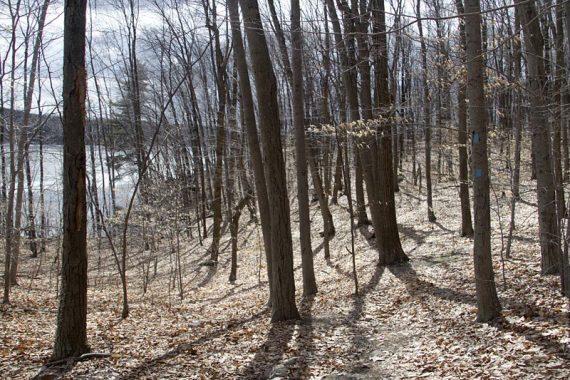 BLUE trail around Butler Reservoir
