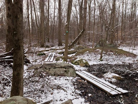 Sourlands Ecosystem Preserve - GREEN Trail