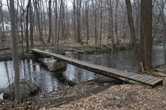 Bridge on the BLUE trail