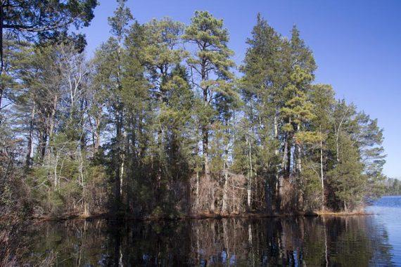 East Creek Pond
