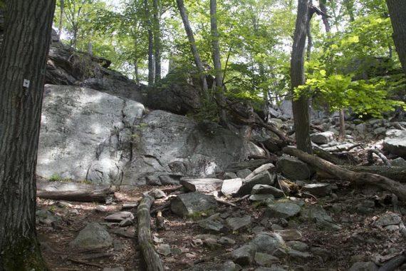 Arden-Surebridge trail