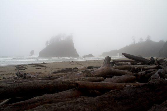 Second Beach in the fog