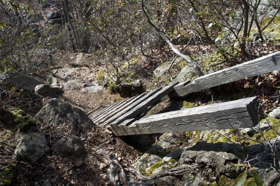 Ladder on Raccoon Brook Hills trail