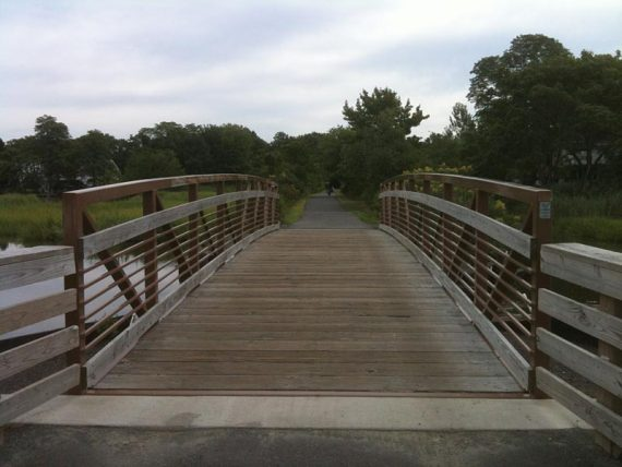 One of several bridges and boardwalks