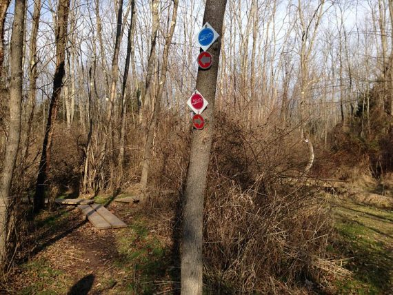 Watershed trail markers