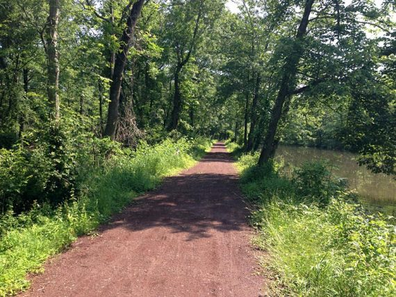 D&R Canal Towpath.