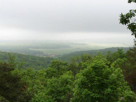 Very foggy view over farmland