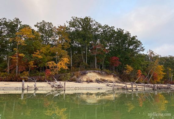 Trees starting to turn color along the edge of water