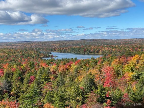 Vibrant fall foliage with a lake in the distance