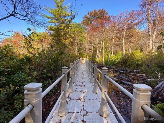 Terrace Pond Floating Bridge