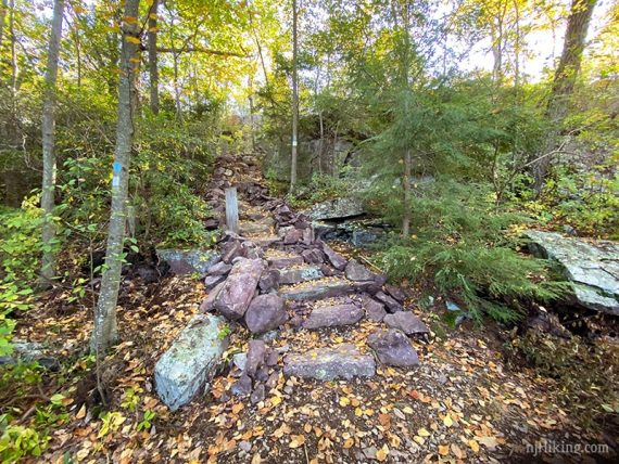 Trail with stone steps