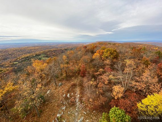Fall foliage seen from a fire tower