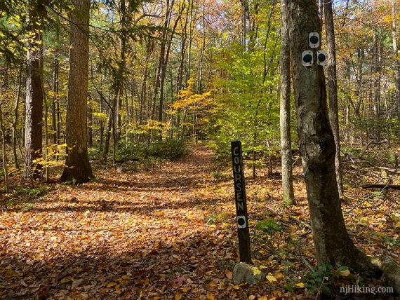 Trail markers for the Coursen Trail