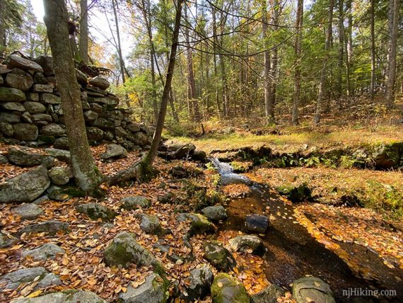 Stone wall remnants near a water cascade on a stream