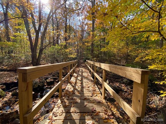 Wooden bridge surrounded by yellow foliage
