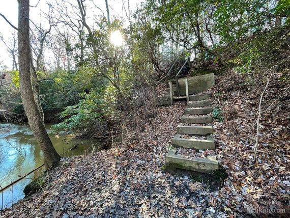 Wooden steps on a trail near a river