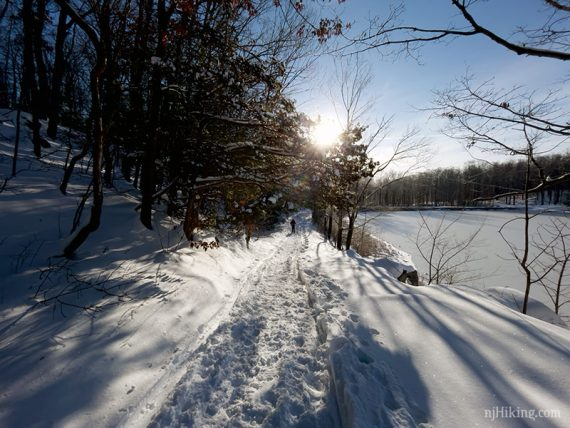 Snowy trail packed by snowshoes and boot prints