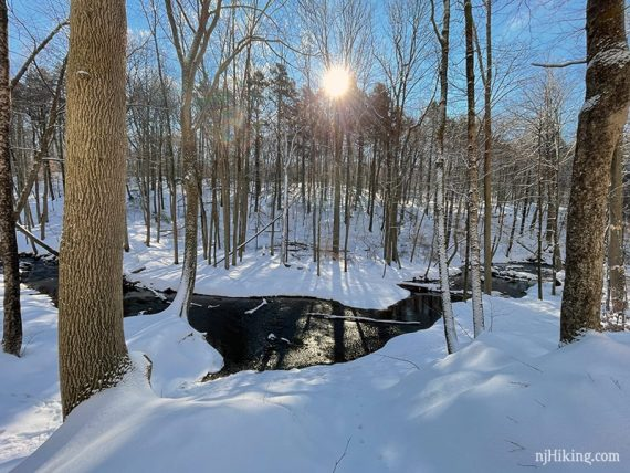 Curved brook surrounded by snow