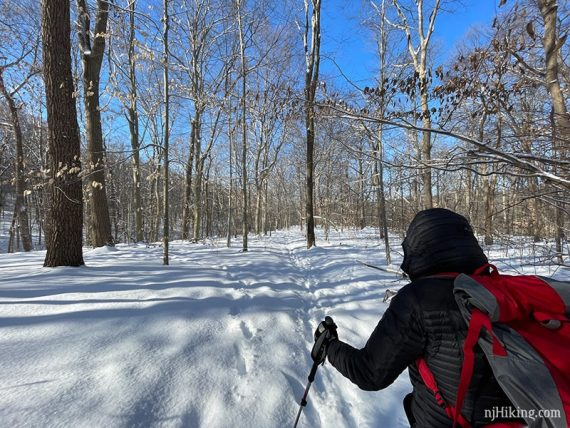Snowshoer on trail.