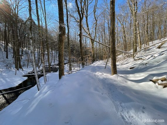 Snowy trail along a brook