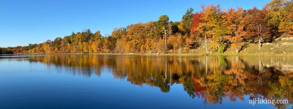 Row of fall foliage reflected in a blue lake.
