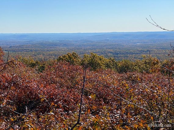 View of New Jersey from the Monument Trail