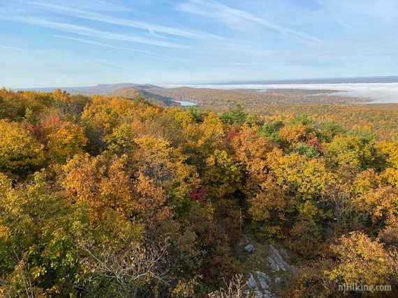 Fall foliage with hills and a lake in the distance