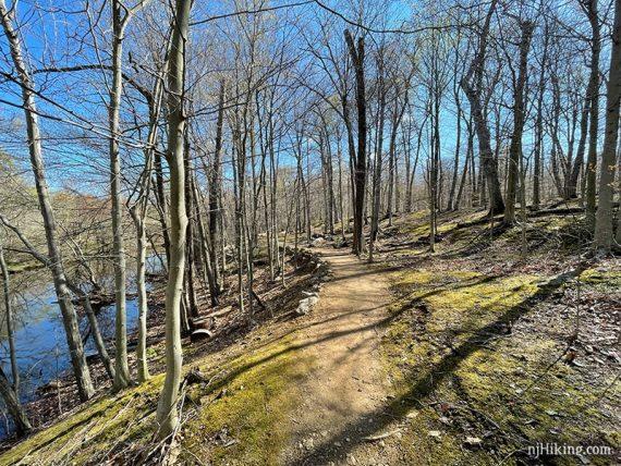 Trail next to a stream
