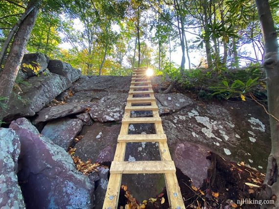 Wooden ladder placed on angled rock face