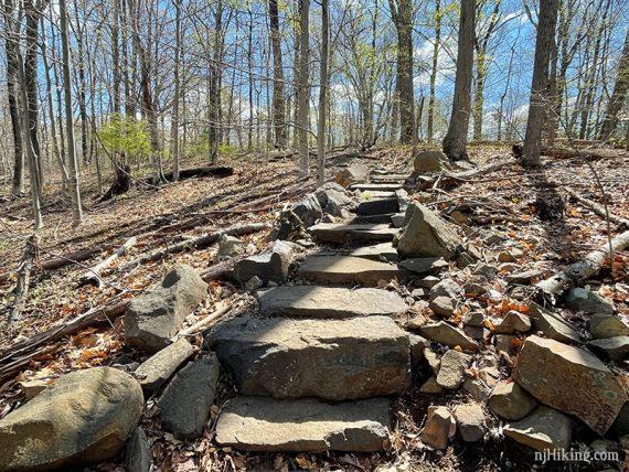 Rock steps on a trail