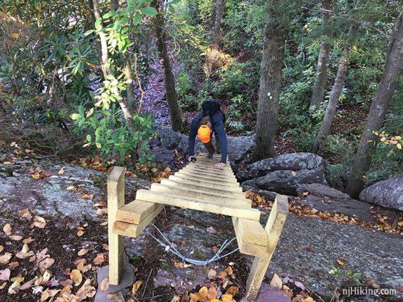 Hiker climbing wooden trail ladder