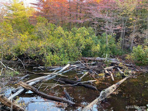 Logs in deep water