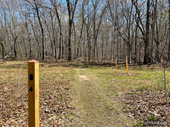 Wooden trail post with a blue marker.