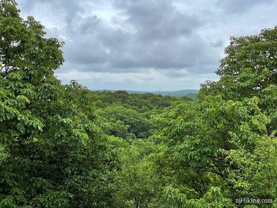 Headley Overlook